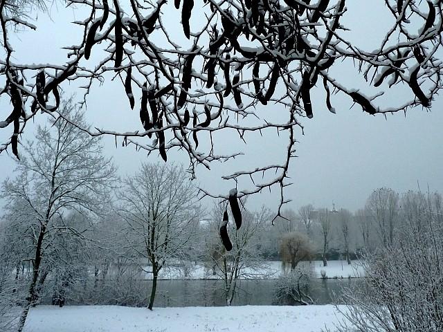 Metz sous la neige 11 Marc de Metz 16 02 2013