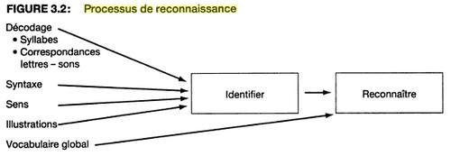 La compréhension en lecture 3 : les microprocessus