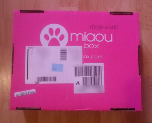 Chou, Kate et la miaoubox