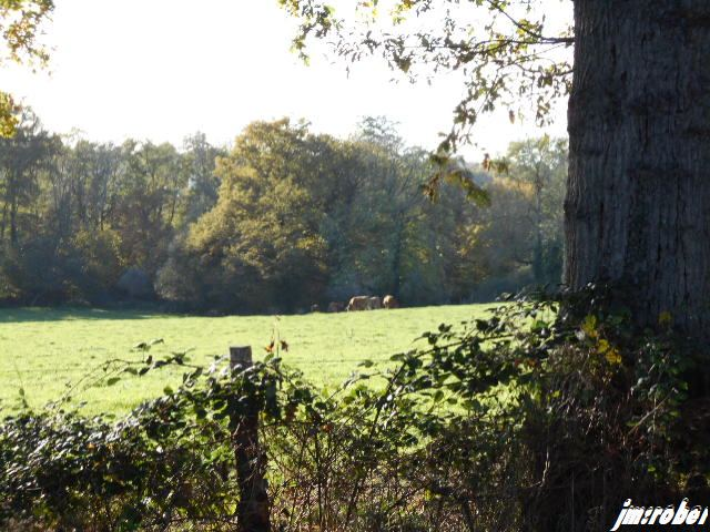 Balade du mercredi au travers de ma commune et sa campagne