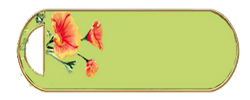 coquelicots sur fond vert anis