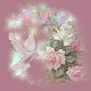 fleurs-oiseau.jpg