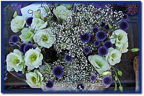 marche-fleurs-9.JPG