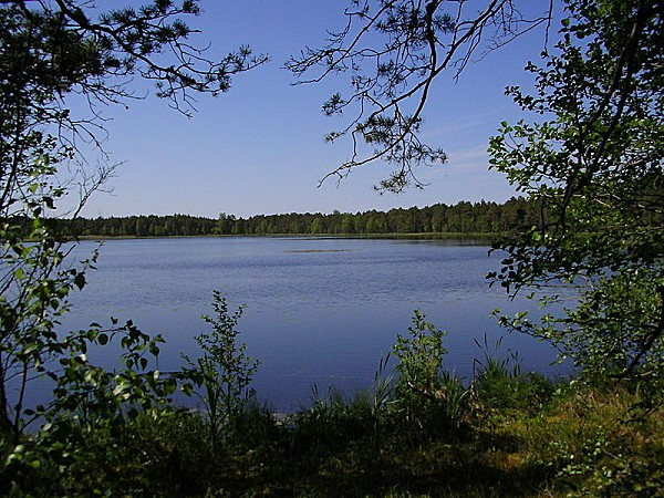 800px-Endla-Naturschutzgebiet_-6-.jpg