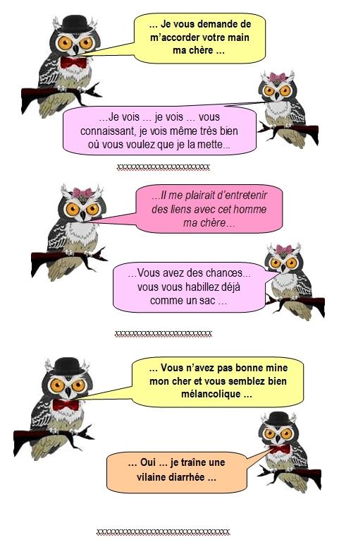 les-chouettes-chouettes-255