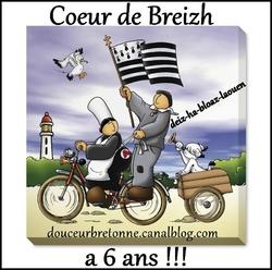 Coeur de Breizh : Jeu des binomes 10 ème Editions