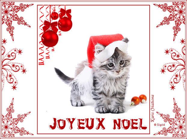 """Joyeux Noel """"Animaux"""" 5"""