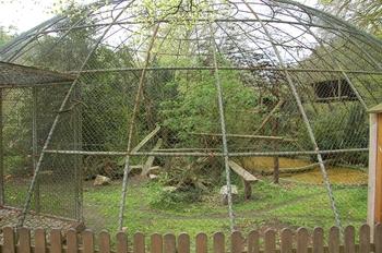 Zoo Osnabruck d50 2012 211