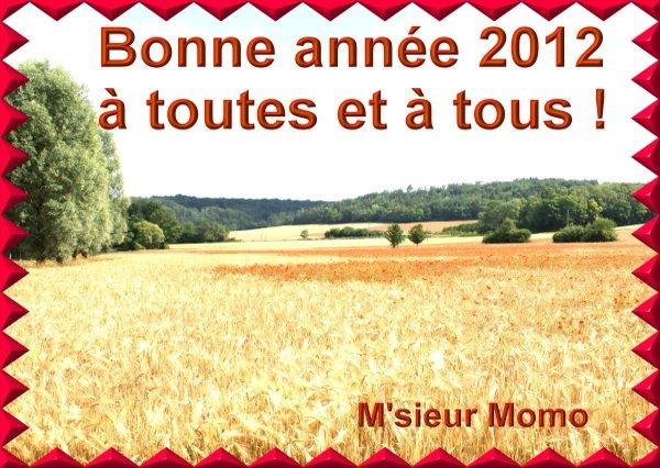 bonne-annee-2012.jpg