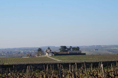 Saint Aubin de Luigné