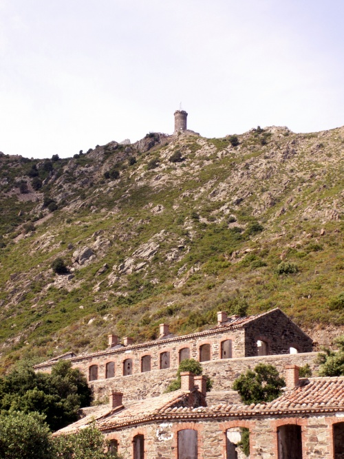 Tour de Madeloc, Collioure (66)