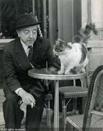 Les écrivains et les chats