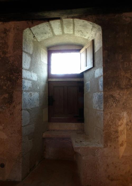 Le château de Fougères-sur-Bièvre ( 2 )