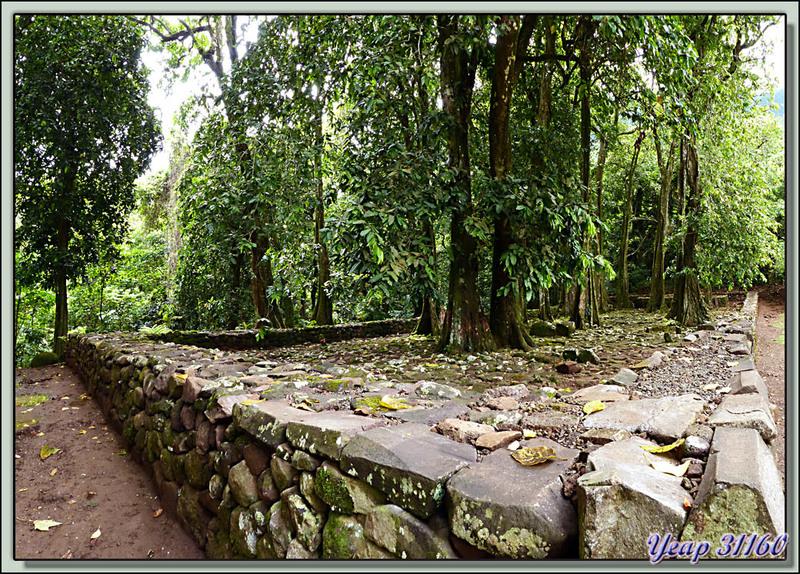Ahu du Marae Titiroa - Moorea - Polynésie française