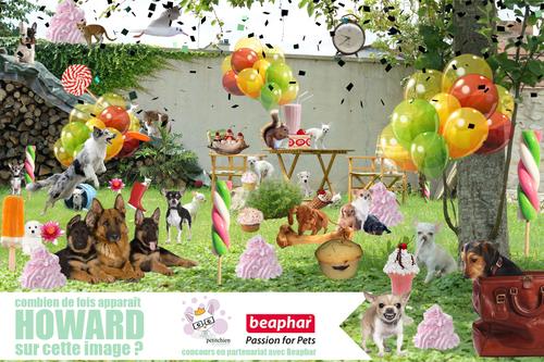 Concours Garden Party !