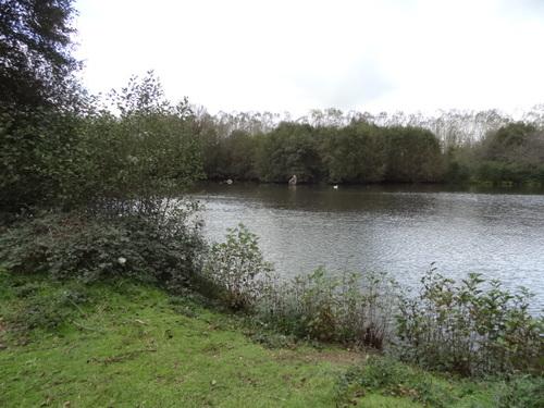Une ballade en bord de Loire
