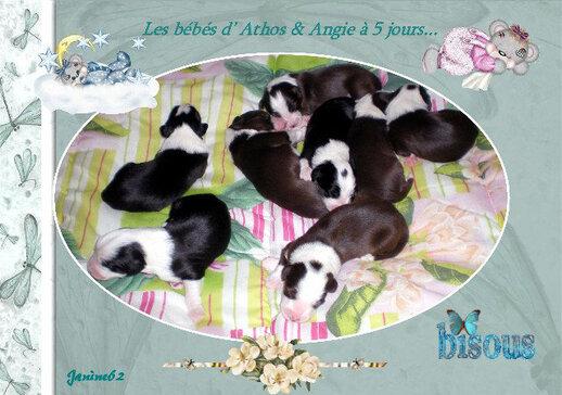 Bébés d'Athos & Gigie