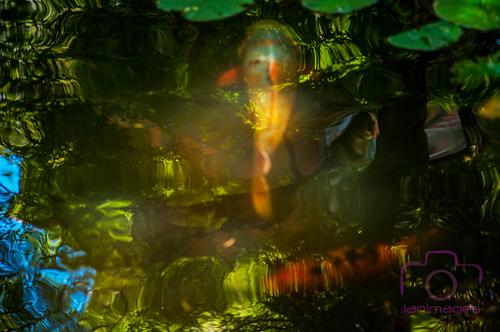 Les petits poissons dans l'eau ...