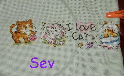 I love Cat (07)