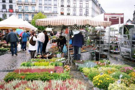 FLEURS ,MONS,bergen hainaut, be, market, marché, fleurs, flowers, bloem, blumen     ,FLEURS , MONS