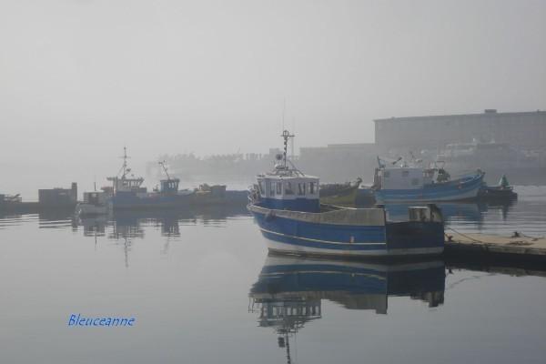 Brest-port_07.JPG