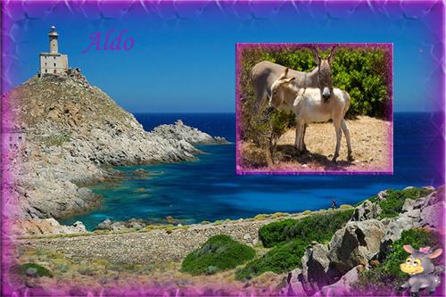 PPS Asinara