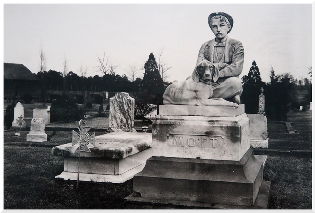 Exposition Walter Evans.
