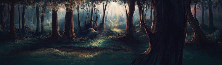 Les territoires de la forêt