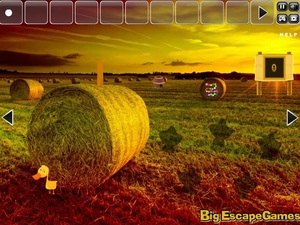 Jouer à Big farm land escape