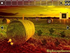 Jouer à Big farm land escape