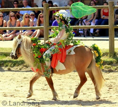les esprits de la nature - 25 ans du poney club yonnais