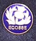 Pin's Ecosse CPM 1991 (6)