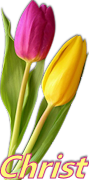 Bouquets Tulipes Roses