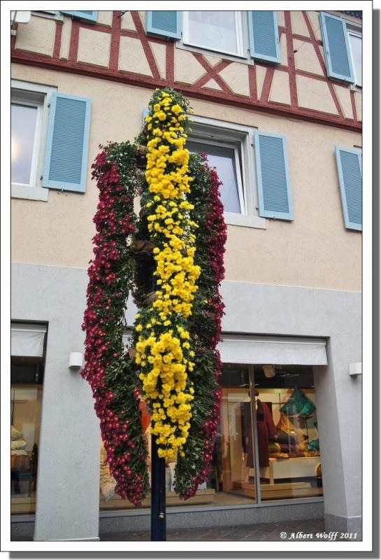 La fête du chrysanthème - part 2.