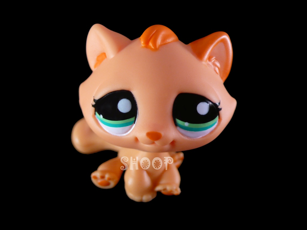LPS 2603