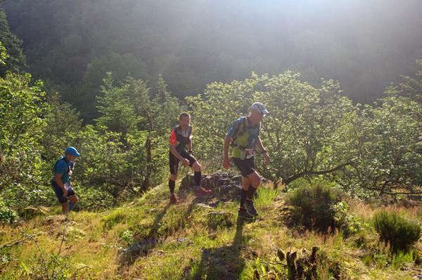 Trail de la Forêt d'Écouves - Radon (61) - Dimanche 2 Juin 2019