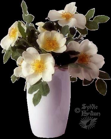 Tubes fleurs création 11