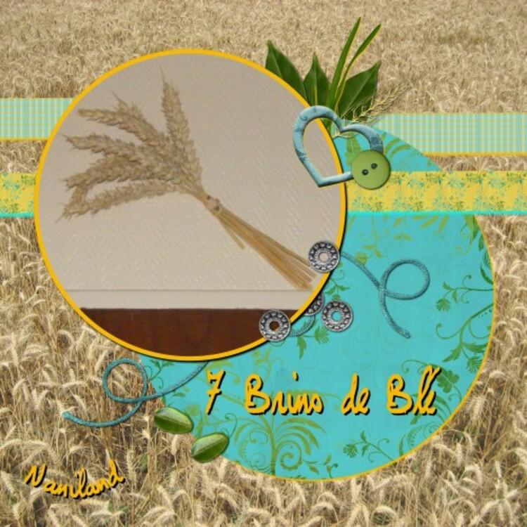 Les 7 Brins de blé