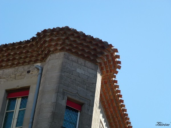 Carcassonne (21)