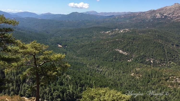 Corse : Aiguilles de Bavella 2/2