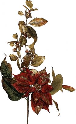 Tubes : Poinsettia