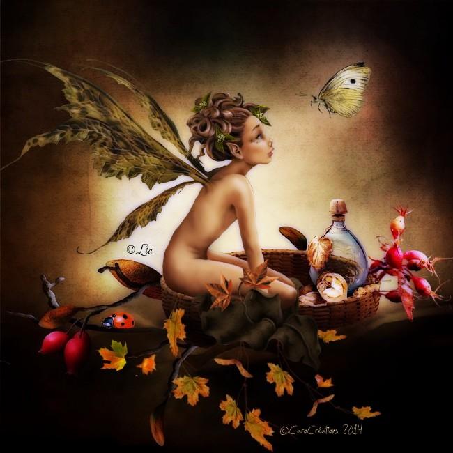 la fée et le papillon