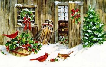 Doux hiver ! ! !