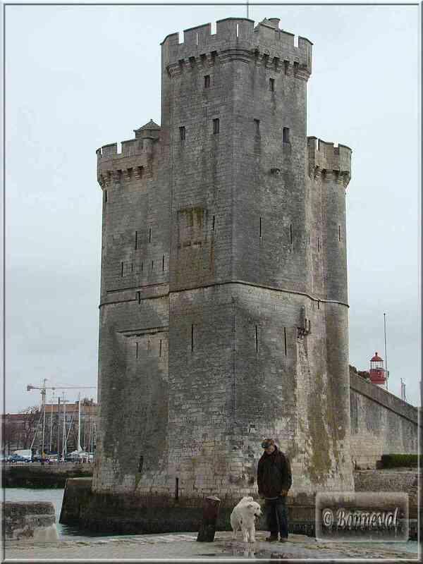 La Rochelle la Tour Saint Nicolas