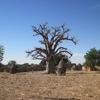 Burkina Boala Dans le village