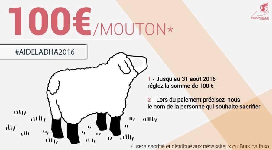 ~ Sacrifice pour Aid - Mouton - 100€ ~