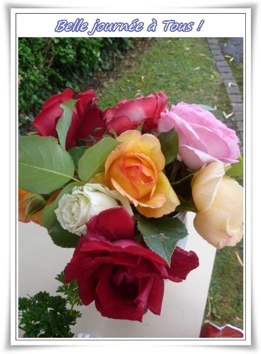 Senteurs ... de roses ...