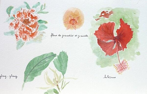 45 fleurs