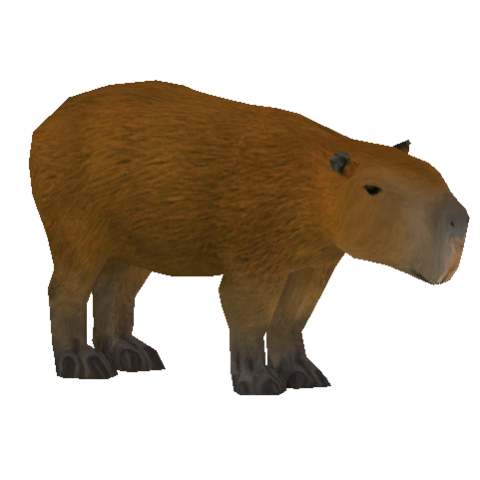 File:CapybaraHolden.png