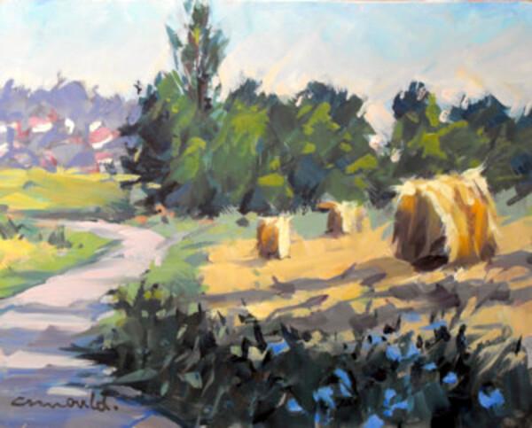 Le village de mon enfance, vu par C.Arnould....